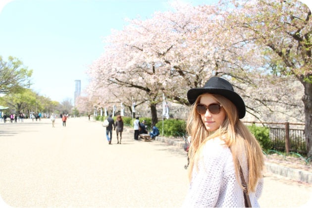 Blossom-viewing-in-Osaka-2