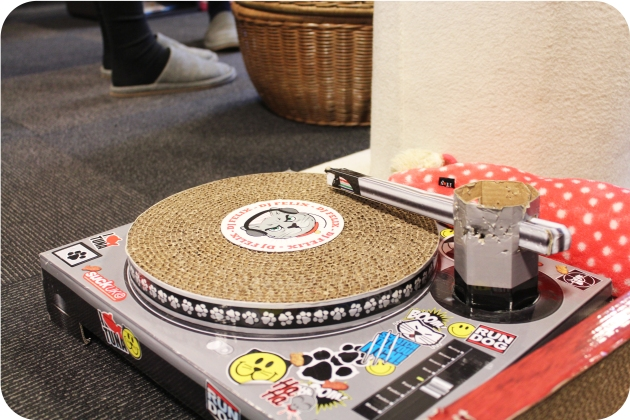 Calico-Cat-Cafe-record